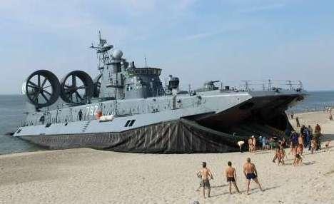 Король Пляжа. Зубр на пляже у поселка Мечниково Калининградская обл.