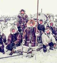 Тундра и Арктика территория вездеходов. Северные Олени - Карибу - Rangifer Tarandus. Северные олени и кочевые народы.