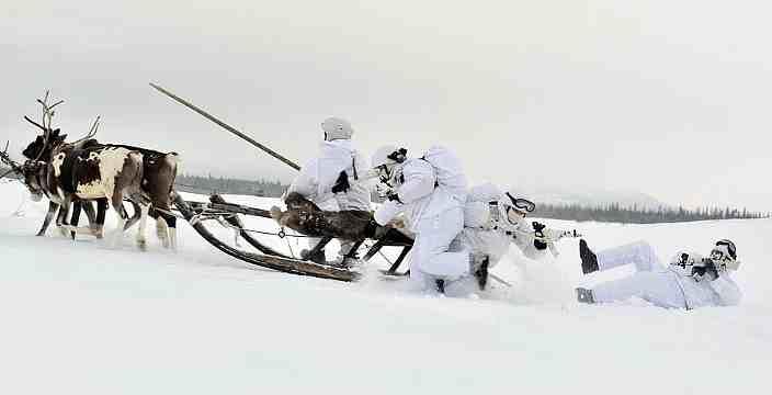 Тундра и Арктика территория вездеходов. Северные Олени - Карибу - Rangifer Tarandus. Учения Арктической Бригады Вооруженных Сил России